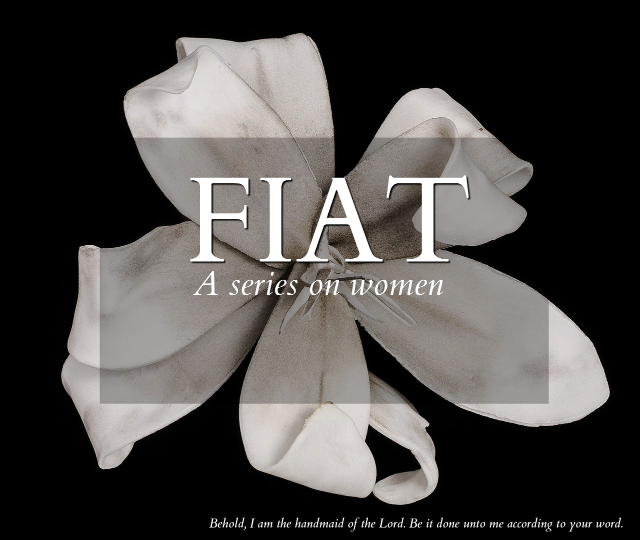 Fiat Lily